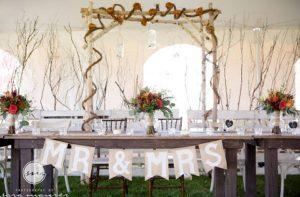 White birch arbor