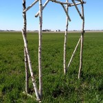 rustic arbor, rustic wedding backdrop, white birch arbor, rustic white birch arbor