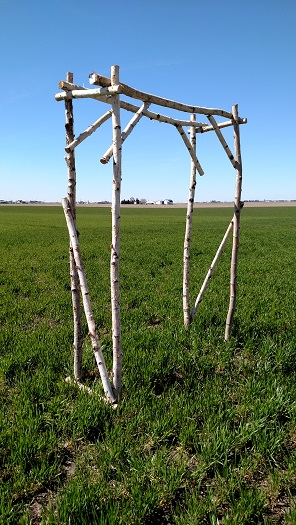 rustic arbor, rustic wedding backdrop, white birch arbor, rustic white birch arbor